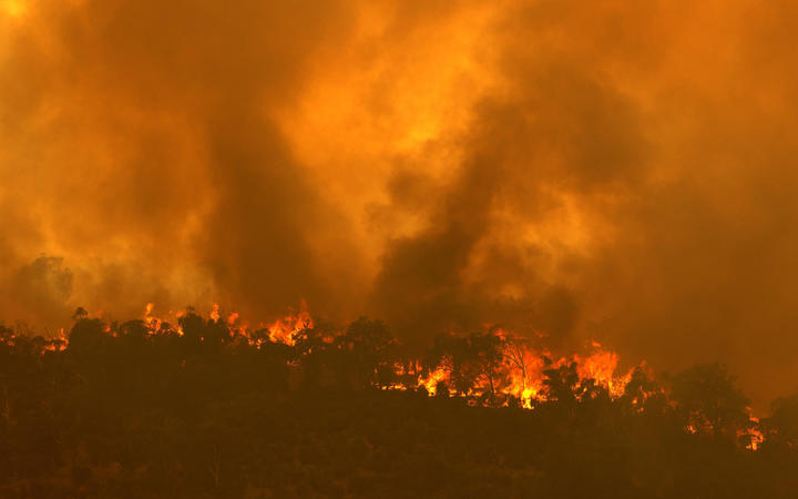 HIF pledges support for communities impacted by WA bushfire