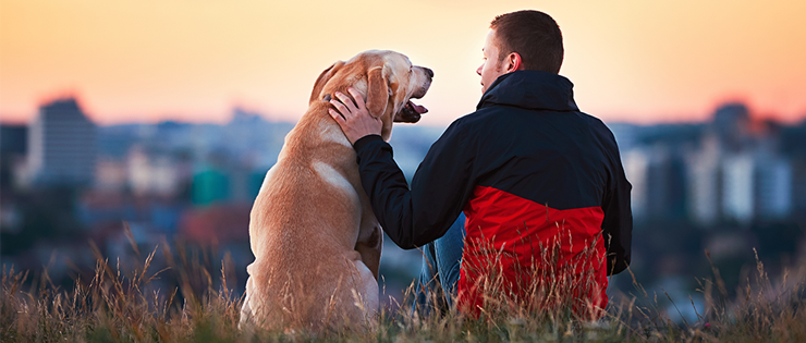 How Your Pet Can Improve Your Mental Health